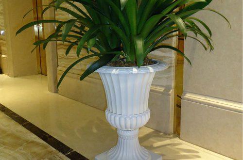 فروش گلدان پلاستیکی پایه دار